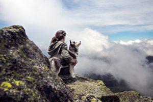 山の頂上で犬と景色を楽しんでいる