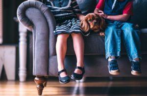 ソファー 子供二人 犬 座ってる