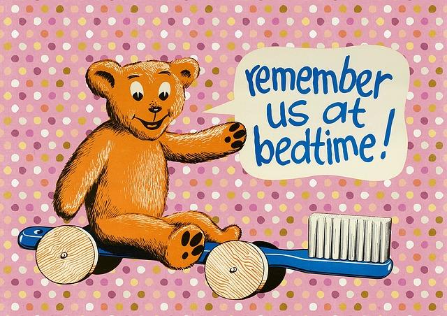 熊 歯ブラシの上 寝る前は歯磨き
