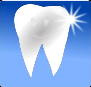 キレイな歯のイラスト