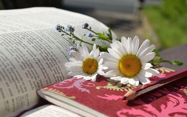 本とノートと花の写真