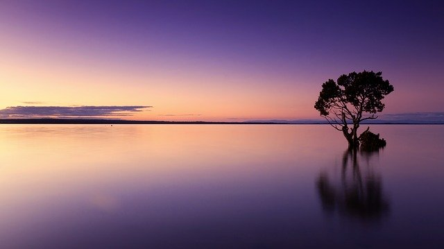 幻想的な湖畔の写真